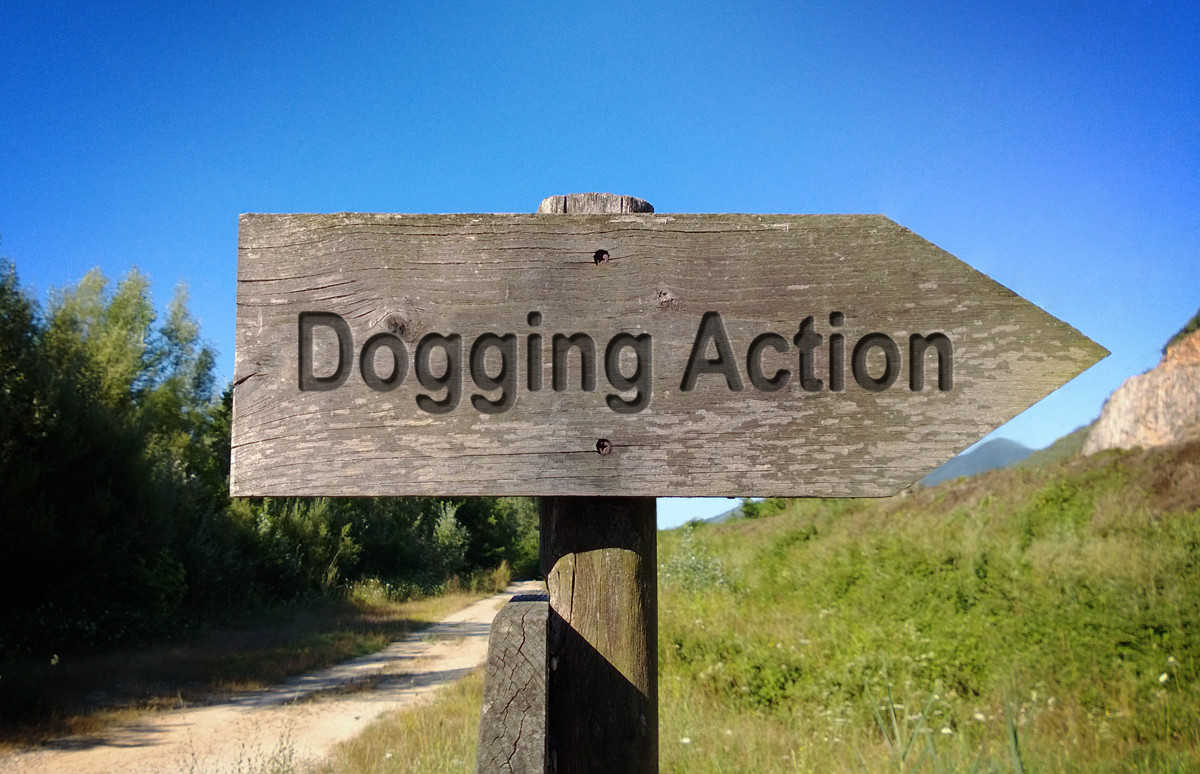 Hampshire Dogging