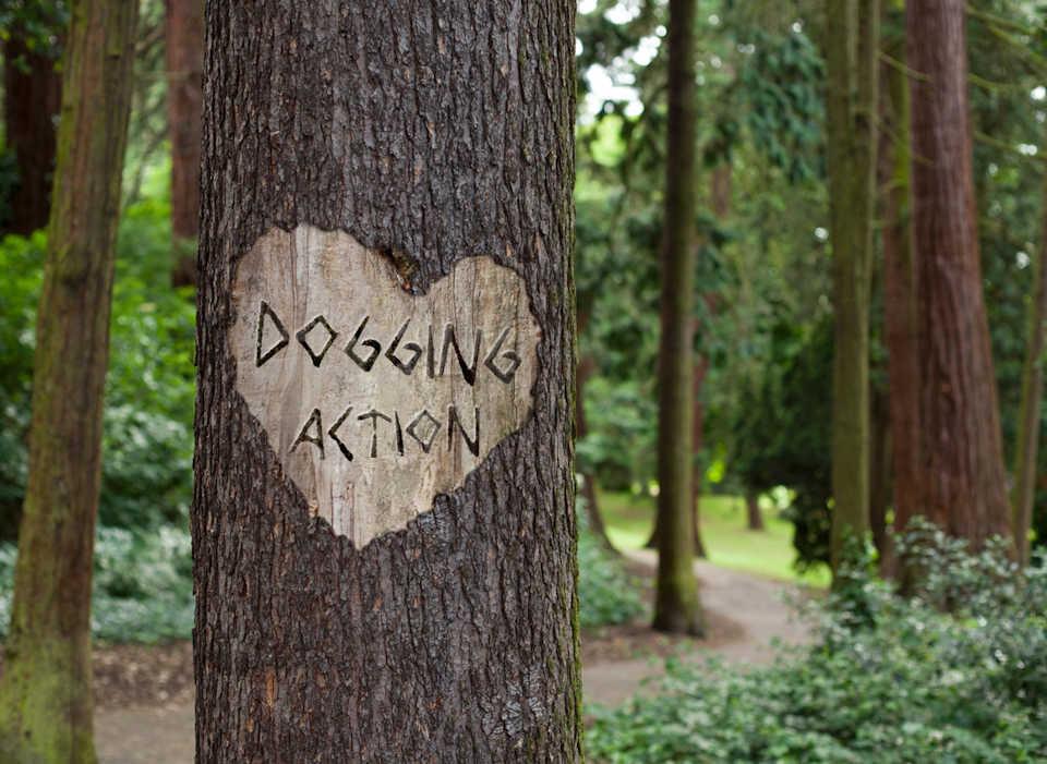 Wisley Dogging