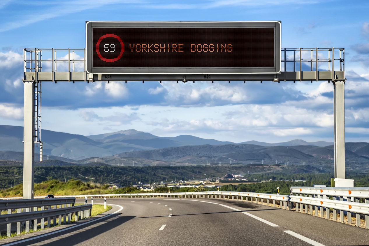 Yorkshire Dogging